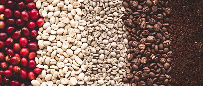 آشنایی بیشتر با قهوه